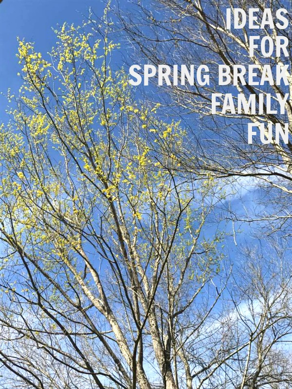 Ideas for Spring Break Family Fun