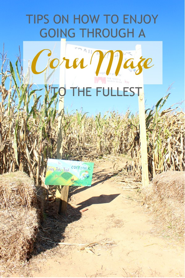 Tips on How to Enjoy Going Through a Corn Maze to the Fullest